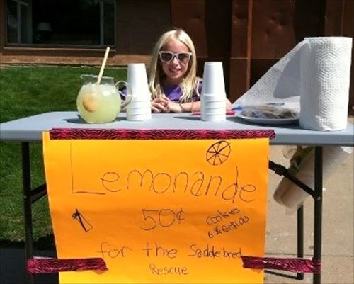 lemonadestand1-s